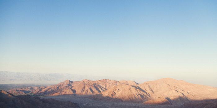 Courtney - Palm Desert